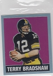 2018 Leaf national 1948 Throwback Terry Bradshaw Pink Refractor /10